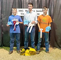 NATHAN, JONATHAN and Aaron Linke are pictured with some of the awards they received at the Western Junior Livestock Show.