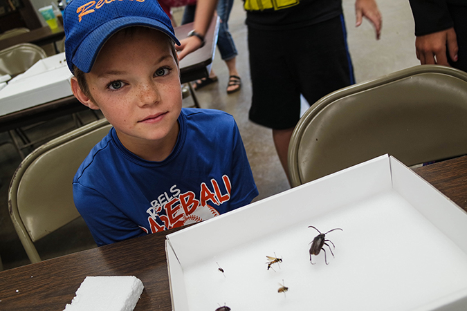 Keaton Fridley, Sanborn County 4-H member, with his bug collection.