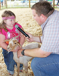 CLOVERBUD ANNA Hunter proudly answers questions from the judge about her sheep entry Saturday during the 4-H County Livestock Show. Anna is the daughter of Robert and Rebecca Hunter.